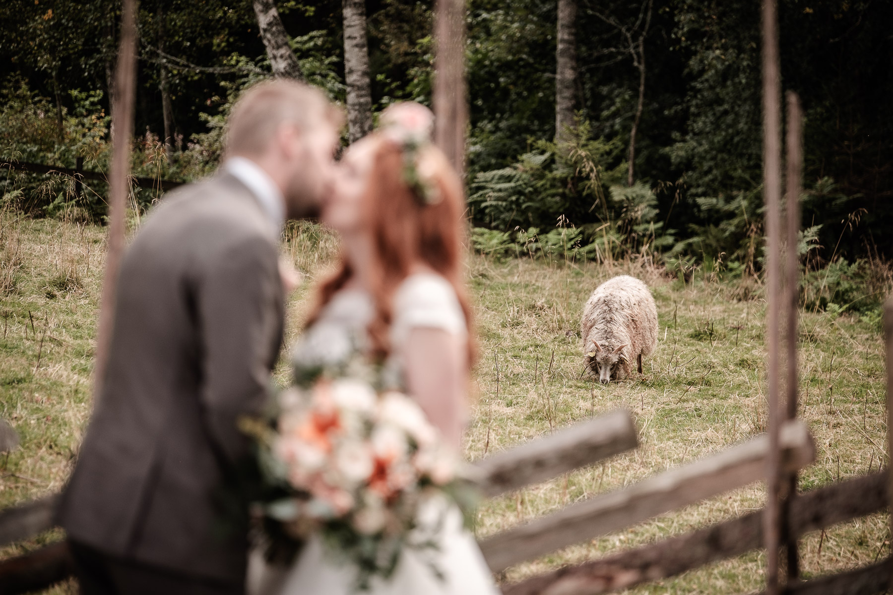 Click to enlarge image elise-christoffer-eidsvoll-ottossonphoto-1033.jpg